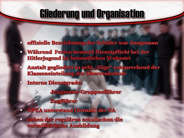 Gliederung und Organisation