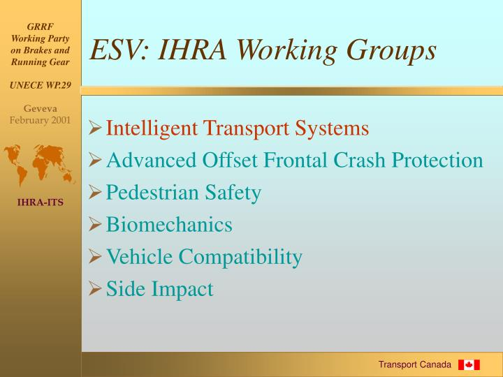 ESV: IHRA Working Groups
