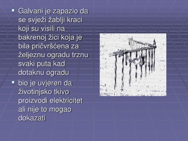 Galvani je zapazio da se svježi žablji kraci koji su visili na bakrenoj žici koja je bila pričvršćena za željeznu ogradu trznu svaki puta kad dotaknu ogradu