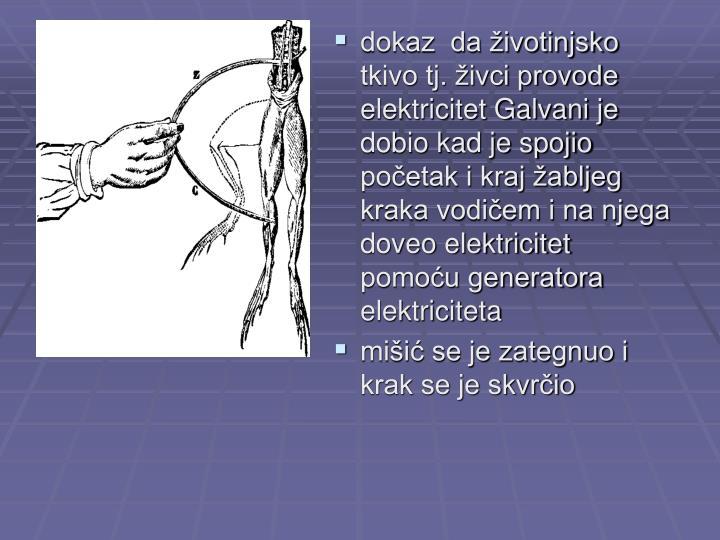 dokaz  da životinjsko tkivo tj. živci provode elektricitet Galvani je dobio kad je spojio početak i kraj žabljeg kraka vodičem i na njega doveo elektricitet pomoću generatora elektriciteta