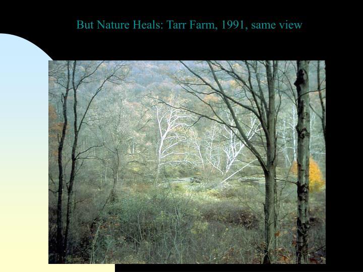 But Nature Heals: Tarr Farm, 1991, same view