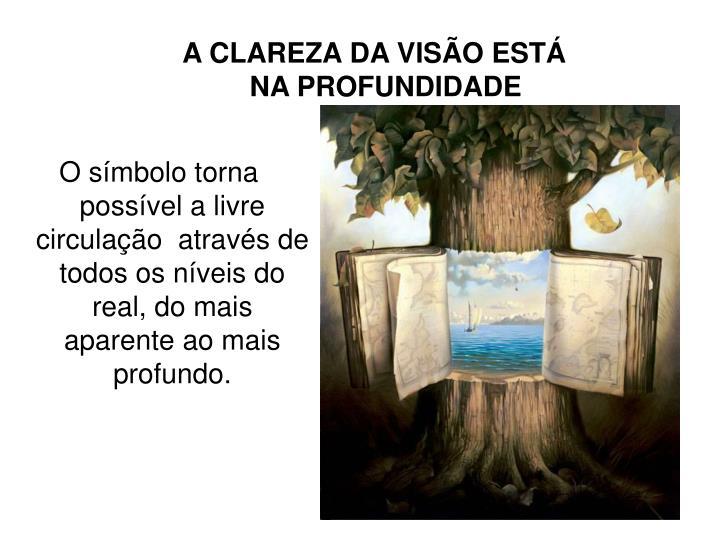 A CLAREZA DA VISÃO ESTÁ