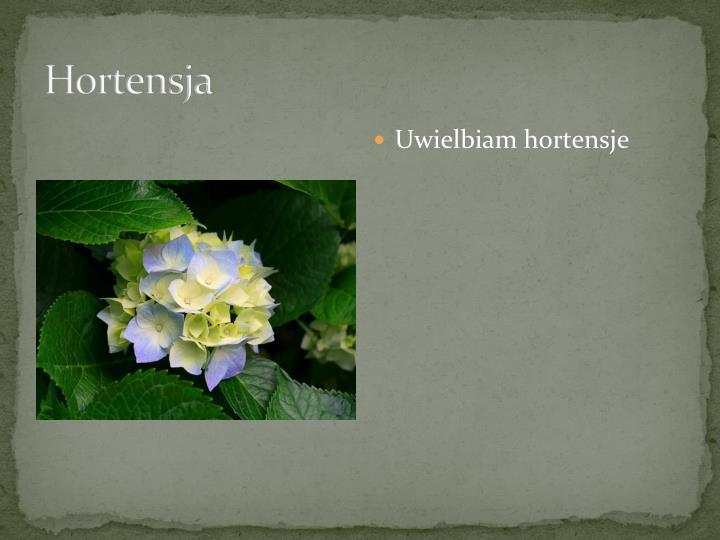 Hortensja