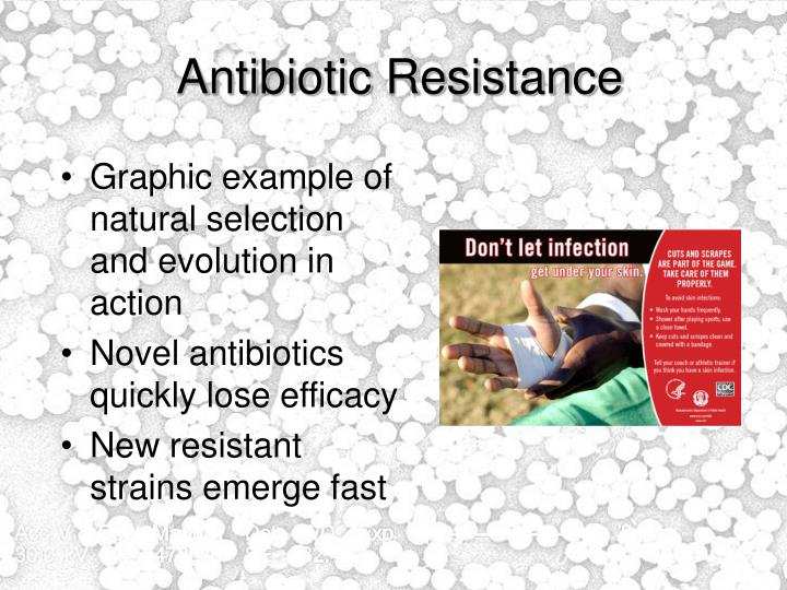 Is Antibiotic Resistance A Form Of Natural Selection