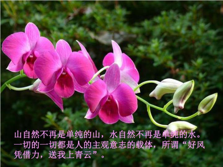"""山自然不再是单纯的山,水自然不再是单纯的水。一切的一切都是人的主观意志的载体,所谓""""好风凭借力,送我上青云""""。"""