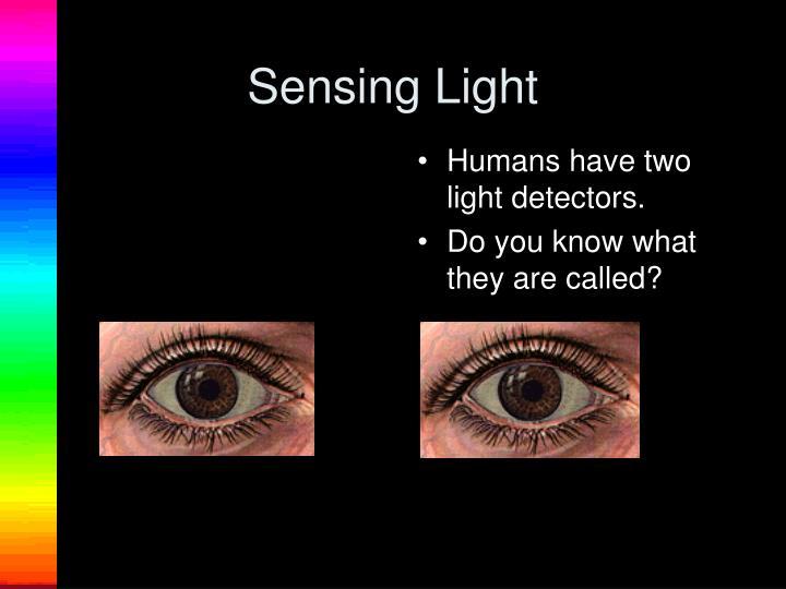 Sensing Light