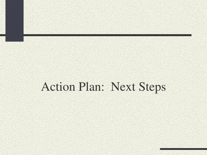 Action Plan:  Next Steps