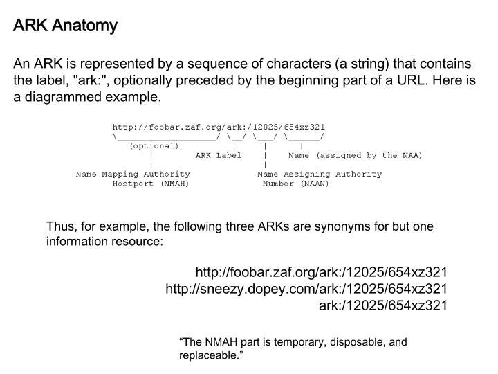 ARK Anatomy