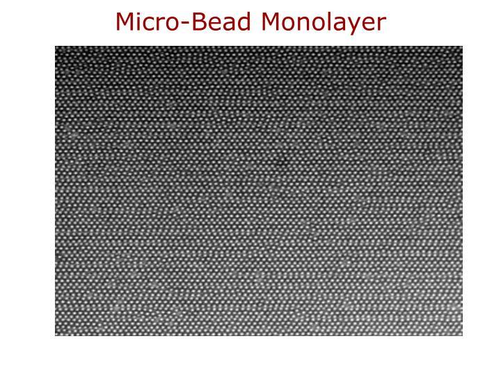 Micro-Bead Monolayer