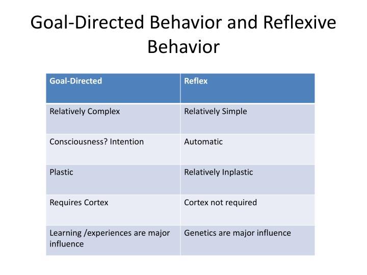 Goal-Directed Behavior and Reflexive Behavior