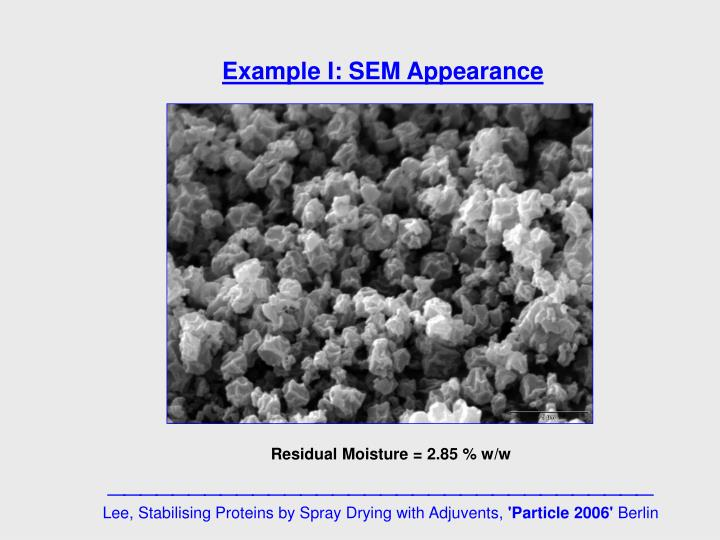 Example I: SEM Appearance