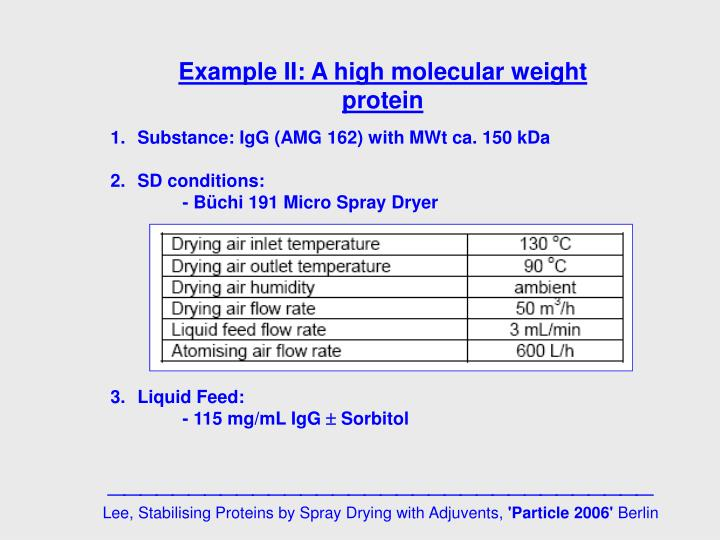 Example II: A high molecular weight protein