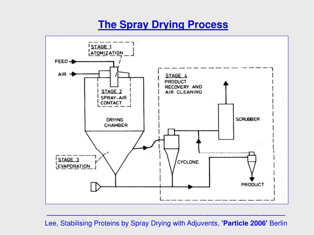 PPT - Why spray dry a protein ? The spray drying process: machines