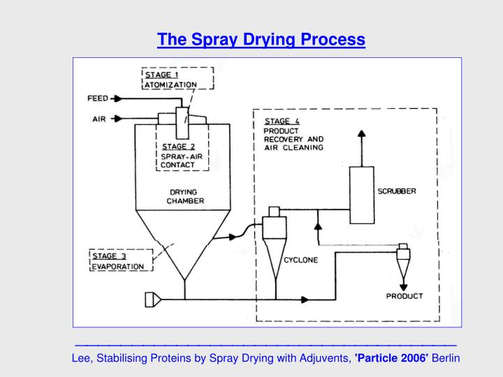The Spray Drying Process