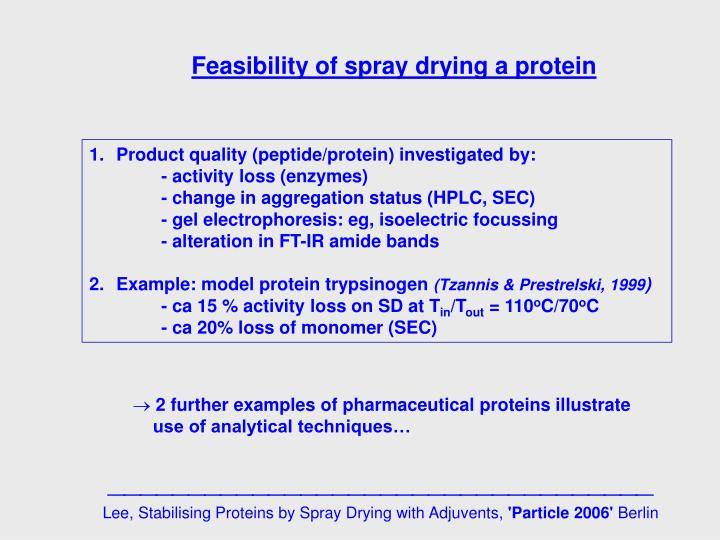 Feasibility of spray drying a protein