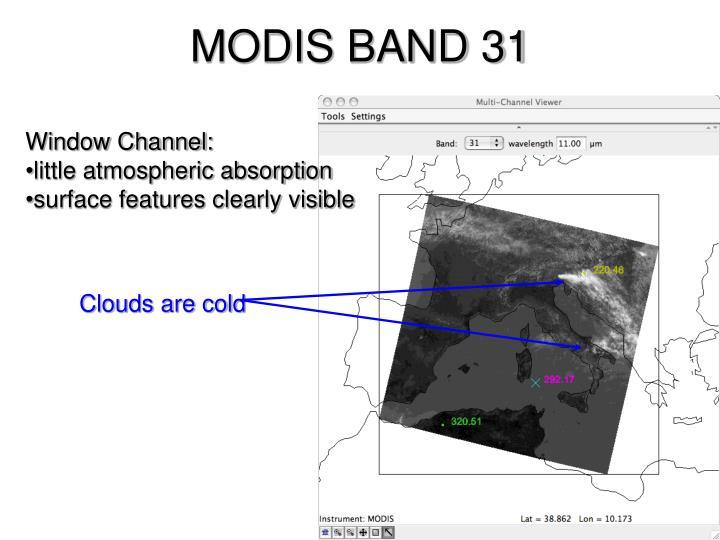MODIS BAND 31