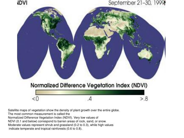 Satellite maps of vegetation show the density of plant growth over the entire globe.