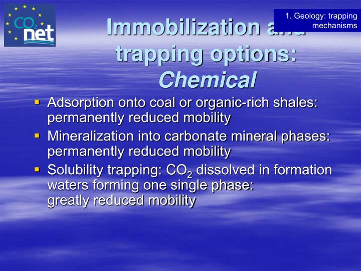 Immobilization and trapping options: