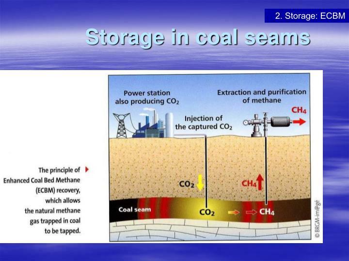 Storage in coal seams