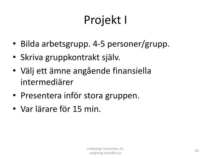 Projekt I