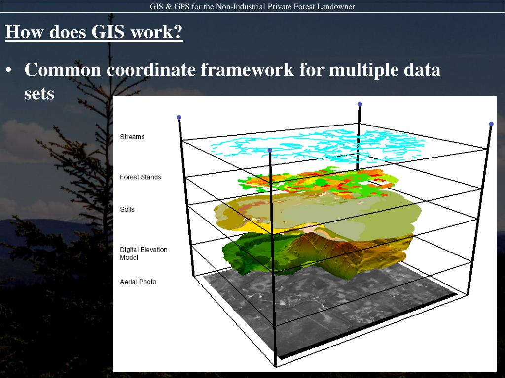 GIS: What is GIS? |Gis Worker