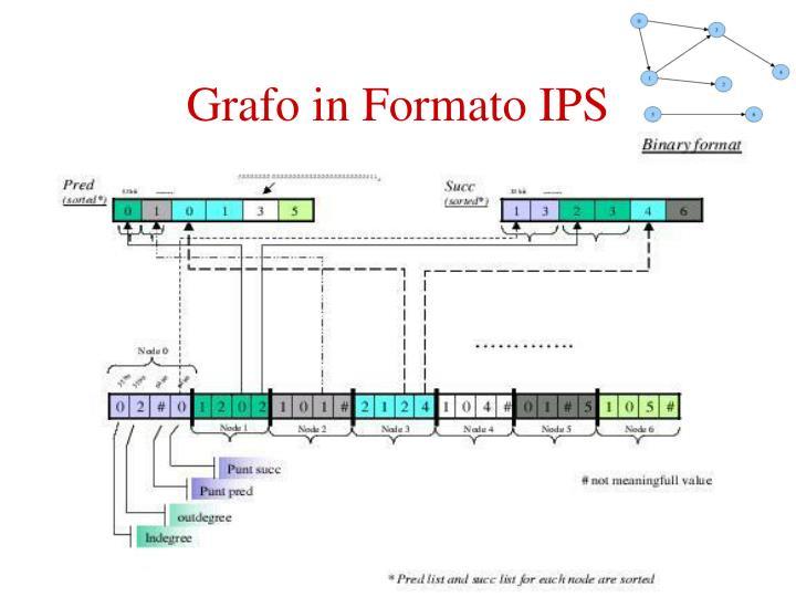 Grafo in Formato IPS