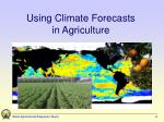 using climate forecasts in agriculture
