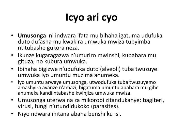 Icyo ari cyo