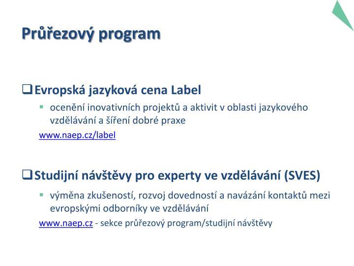 Průřezový program