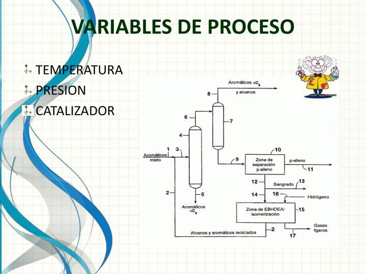 VARIABLES DE PROCESO
