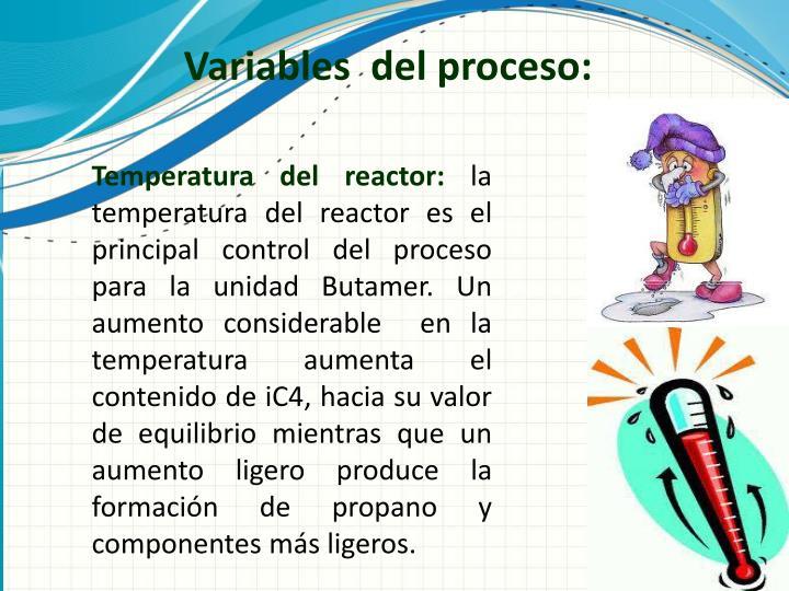 Variables  del proceso: