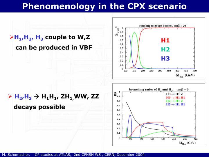 Phenomenology in the CPX scenario