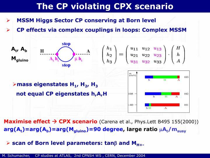 The CP violating CPX scenario