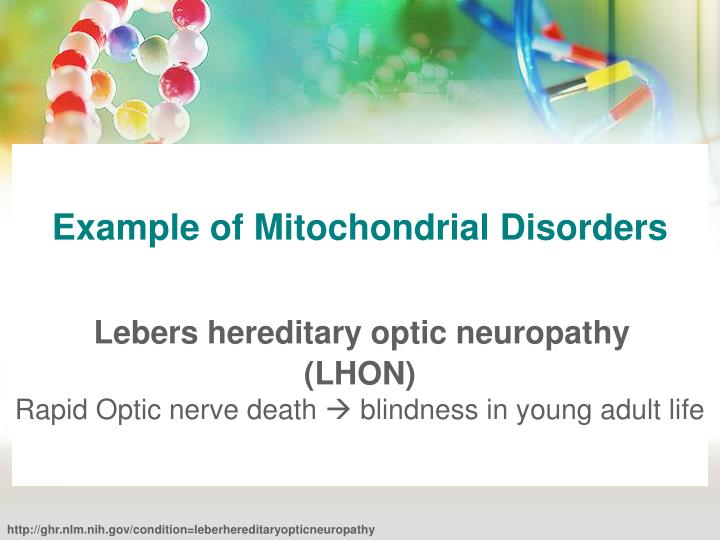Example of Mitochondrial Disorders