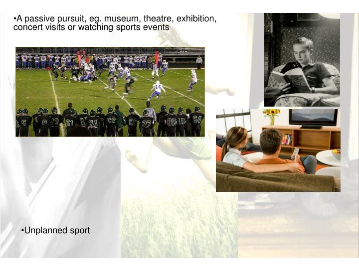 A passive pursuit, eg. museum, theatre, exhibition, concert visits or watching sports events