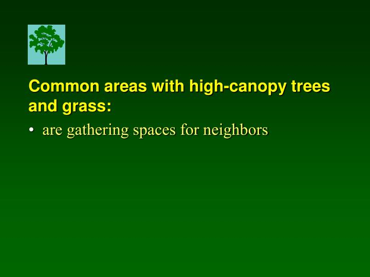 Common areas with high-canopy trees and grass: