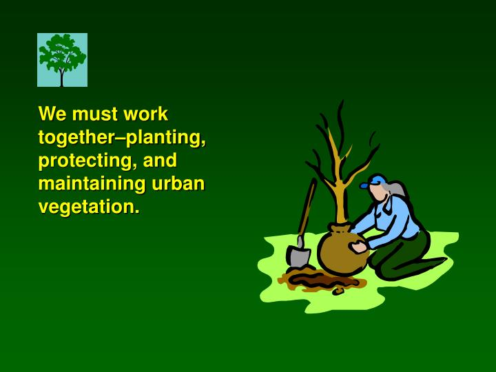 We must work together–planting, protecting, and maintaining urban vegetation.