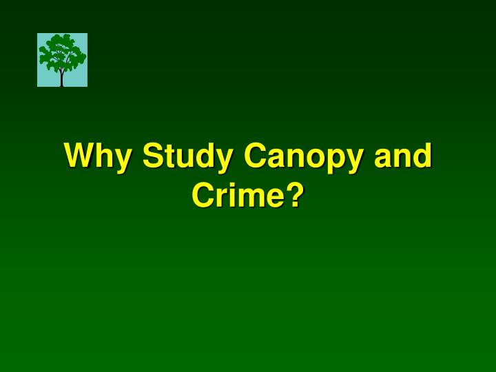 Why Study Canopy and Crime?