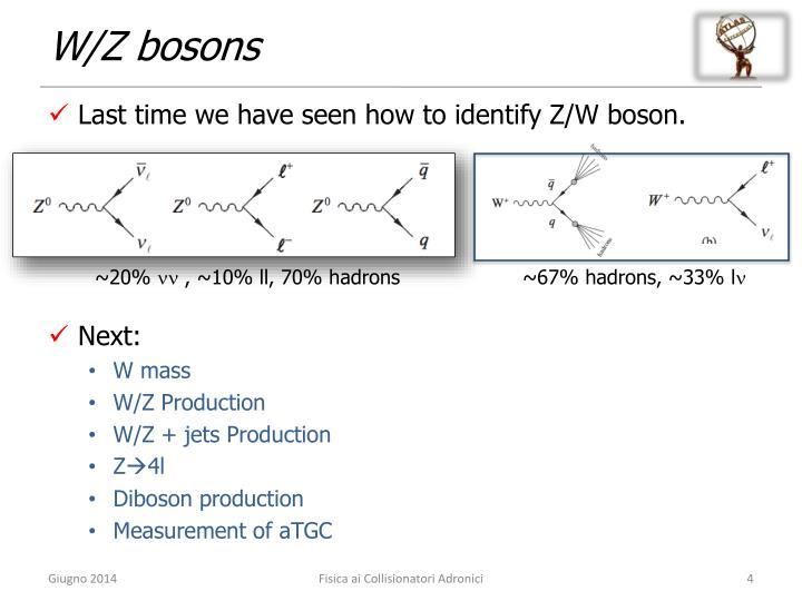W/Z bosons
