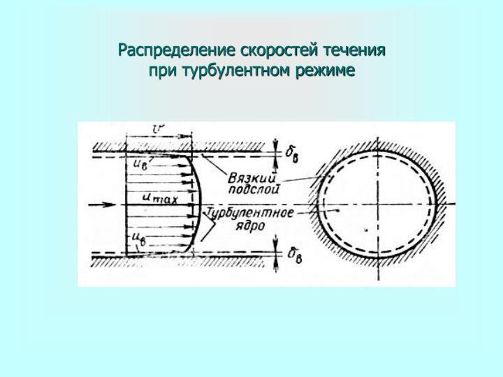 Распределение скоростей течения