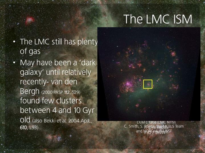 The LMC ISM