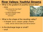 river valleys youthful streams