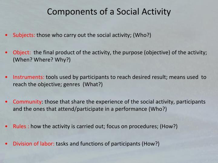 Components of a Social Activity