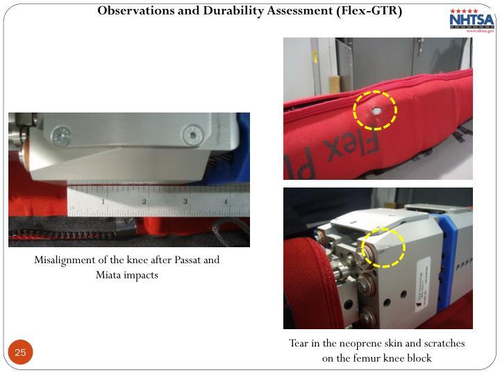 Observations and Durability Assessment (Flex-GTR)