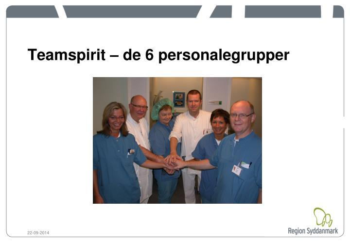 Teamspirit – de 6 personalegrupper