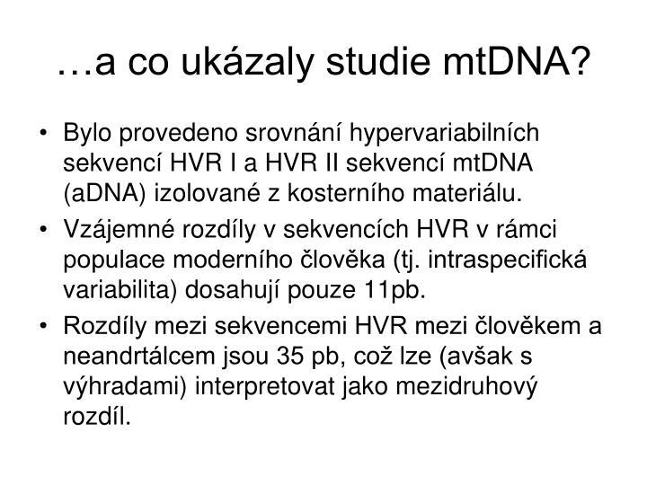 …a co ukázaly studie mtDNA?