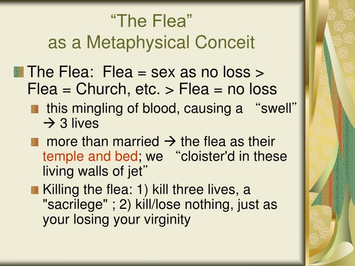metaphysical conceit in the flea