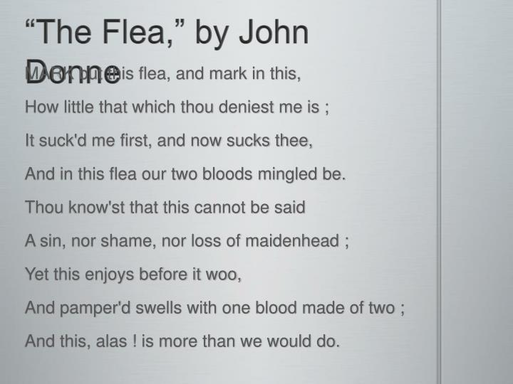 flea john donne essays This is a b-grade response on donne's 'the flea' which could prove as a useful  model for pupils prior to peer assessment as it closely follows.