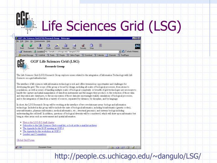 Life Sciences Grid (LSG)