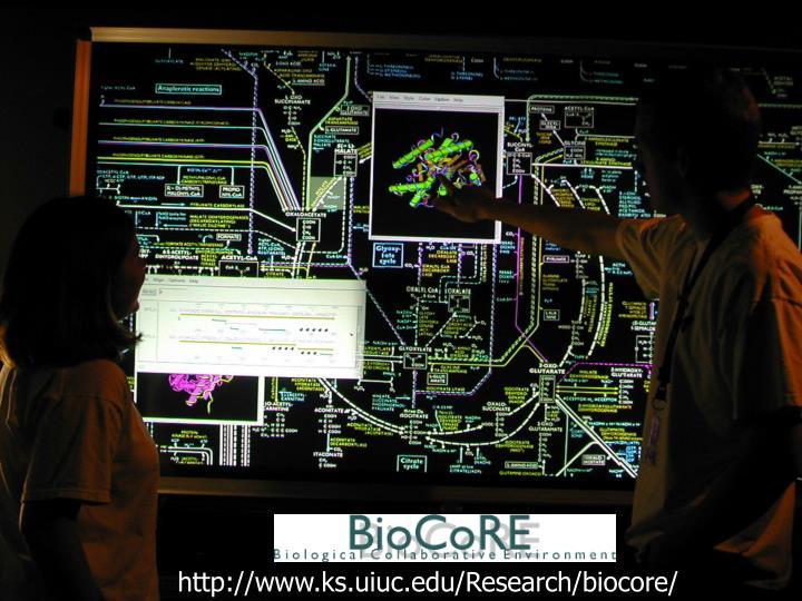 http://www.ks.uiuc.edu/Research/biocore/